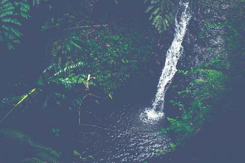 forest time lapse photography of waterfalls maunawili falls