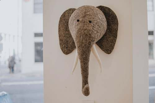 portland gray elephant head figure hanging on wall elephant