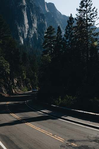 road mountain pass with trees yosemite valley