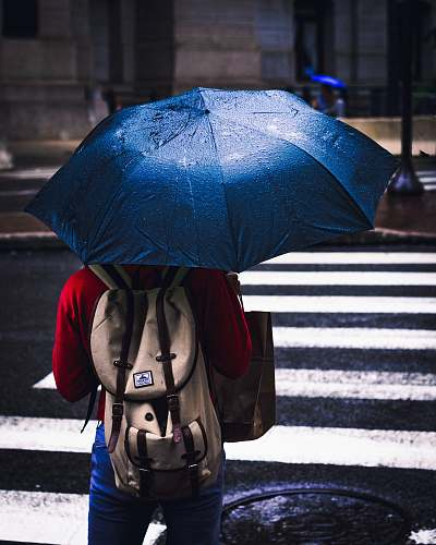 photo philadelphia person holding blue umbrella sad girl rain free for commercial use images