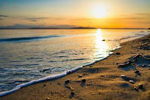 beach closeup photo of seashore on sunset shoreline