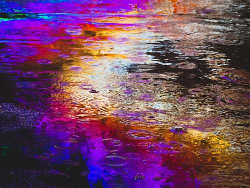 outdoors rain drop purple
