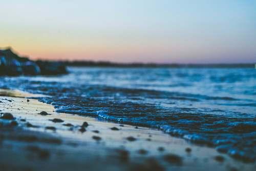 beach shallow focus photography of seashore coast
