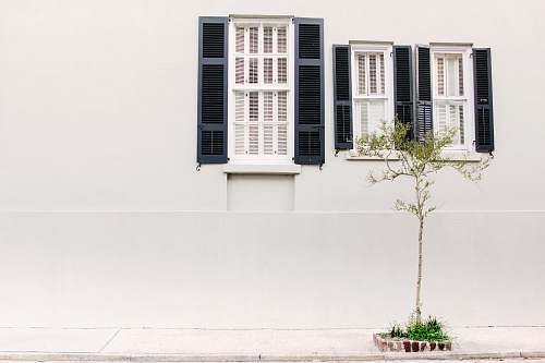 shutter photo of three glass windows with white wooden frames plant