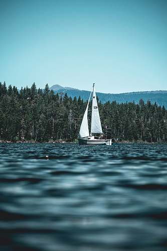 sailboat white and black sailboat on body of water near green high trees and mountain under blue sky at daytime boat