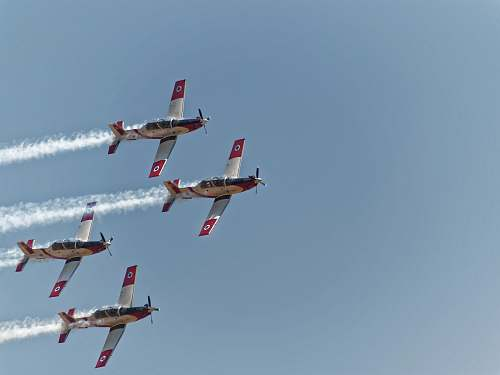 animal time lapse photography of an air show flying