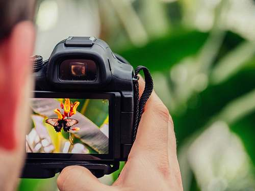 camera black digital camera capturing yellow flower photography