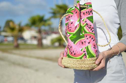 greece pink and green water melon-printed bag bag