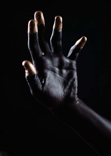 person person's right hand human