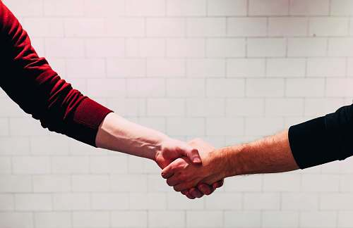 arm two person shaking hands near white painted wall handshake