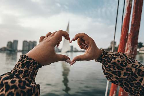 photo person human hands making heart shape egypt free for commercial use images