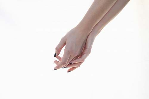 person right and left human hands hand