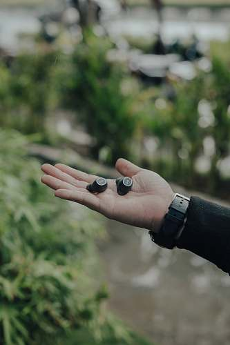 person two black wireless earbuds on person's palm fruit