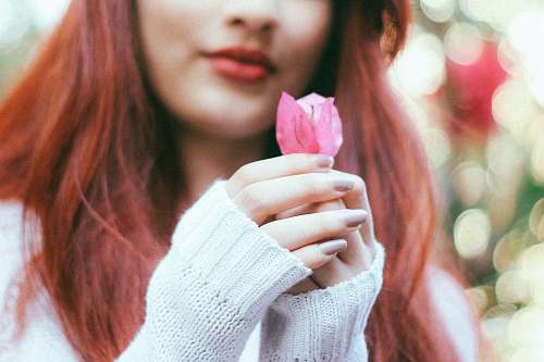 person woman holding pink rose human