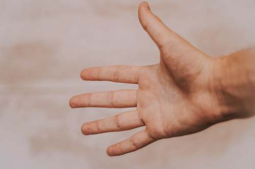 human person showing left hand hand