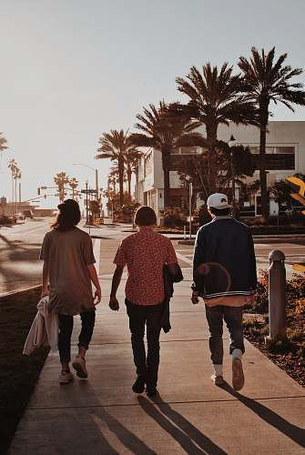 human three persons walking near palm trees pedestrian