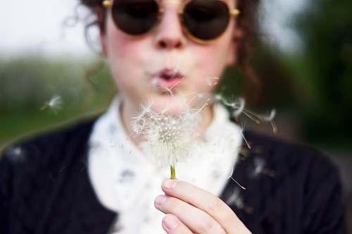 people woman blowing white dandelion flower human