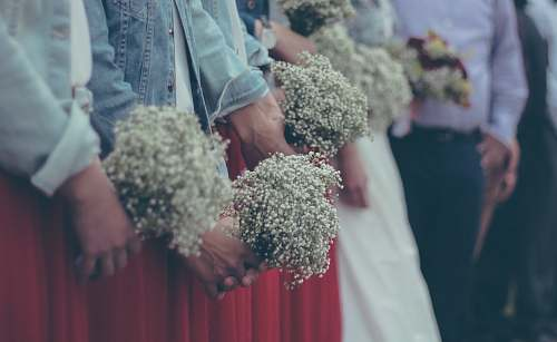 jar people holding a bouquet of baby's breath flower flora