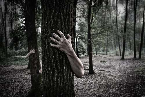 forest person hugging tree scary