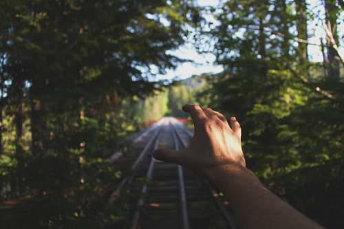 forest person reaching train railways between trees nature