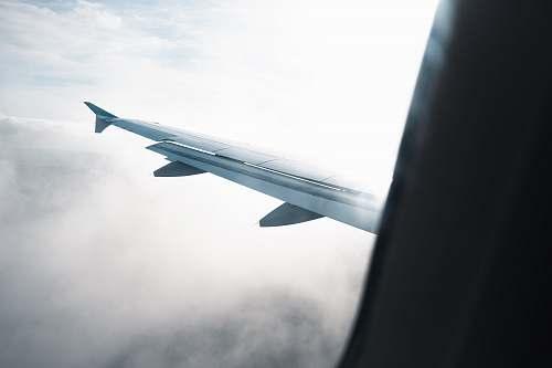 airplane flying white plane wings transportation