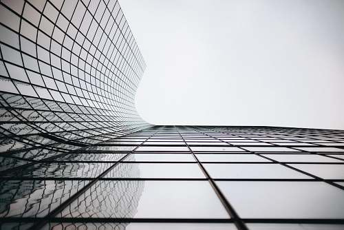 looking up architectural photograph of building curtain wall paris