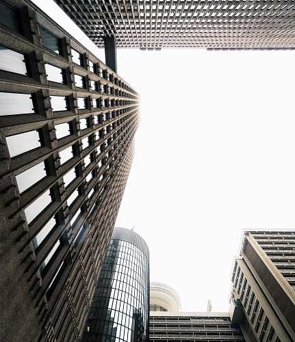 building bird'seye view photography of building skyscraper
