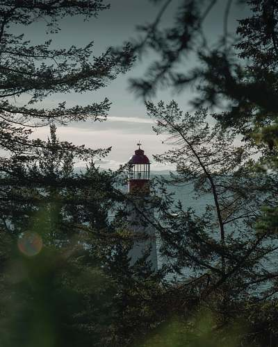 building white and red lighthouse near trees grey