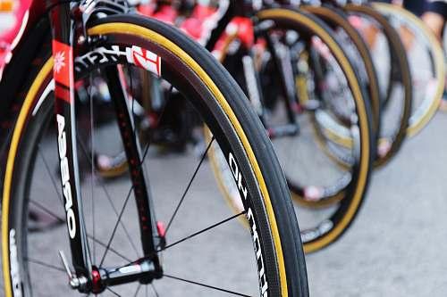 bicycle bikes on gray concrete pavement transportation