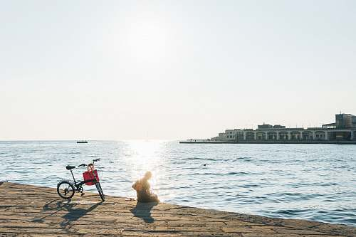 path person sitting on shore beside bicycle walkway