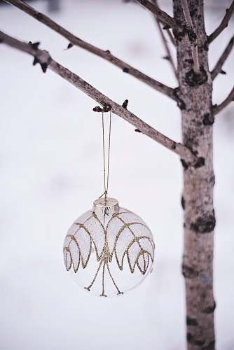 animal white Christmas bauble plant