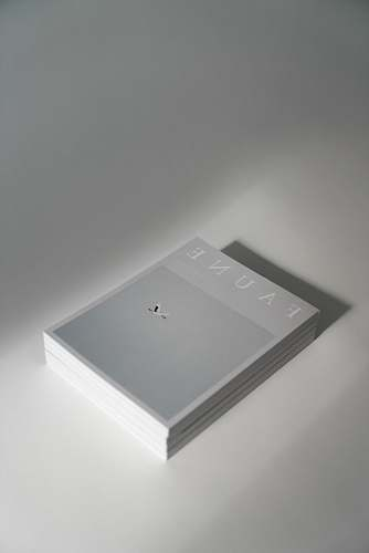 white Faune cards on desk text