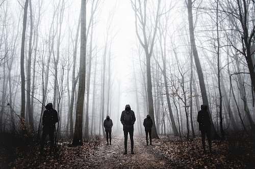 human five men wearing black hoodie standing on forest person