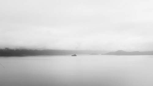 nature grayscale photo of a body of water fog