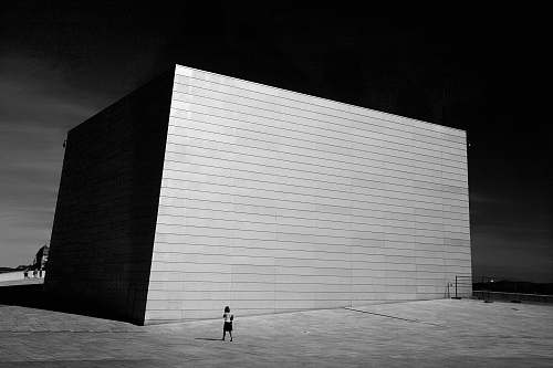 human grayscale photo of building and person walking beside person