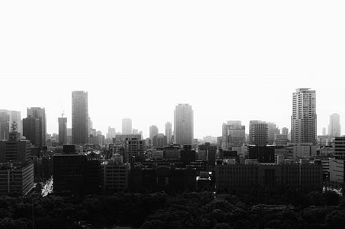 building grayscale photo of city buildings nature