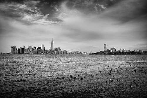 grey grayscale photo of city skyline ocean