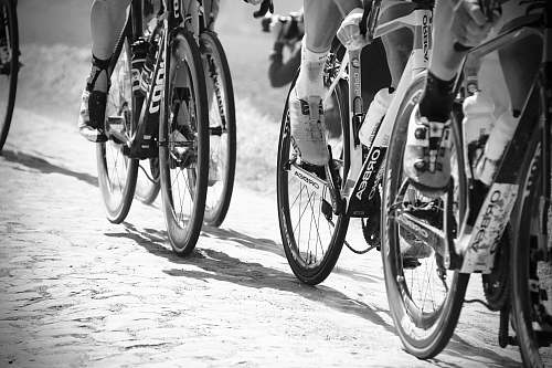 bike grayscale photo of people racing bikes bicycle