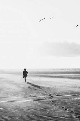 person grayscale photo of person walking under birds human