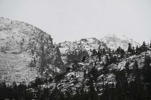 photo grey grayscale photo of pine trees and mountain mountain free for commercial use images