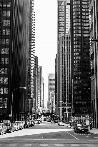 city grayscale photo of road in between of tall buildings with vehicles urban