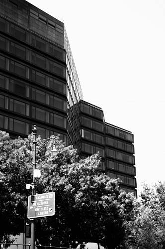 building grayscale photography of building near trees budapest