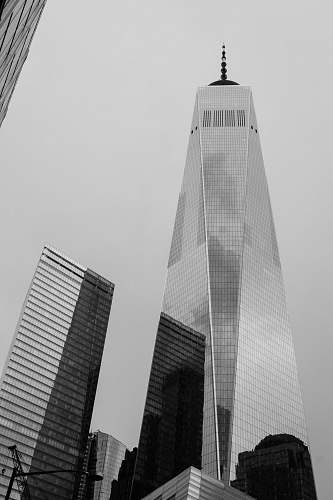 photo building grayscale photography of One World Trade center grey free for commercial use images