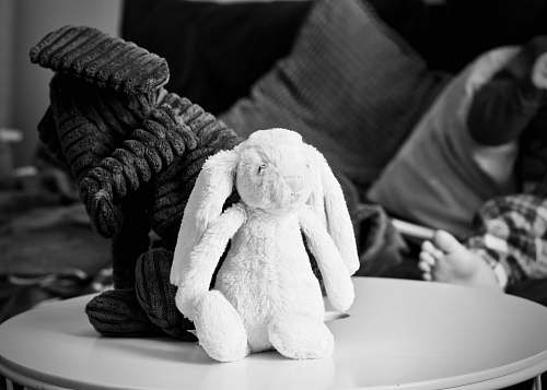 toys grayscale photography of two rabbit plush toys on top of coffee table stuffed animal