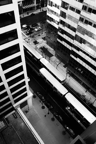 urban grayscale photography of vehicles on road near buildings collage