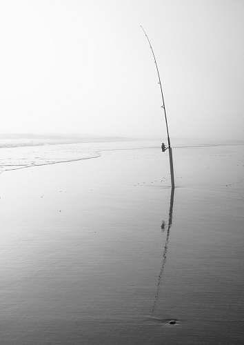 fishing ocean photography leisure activities