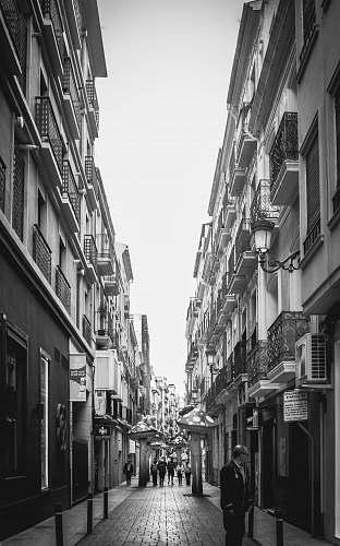 path people walking on street human