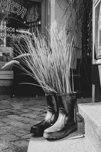 apparel twigs inside black rain boots on pavement near stairs clothing