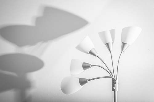 photo lamp white-and-silver 5-light floor lamp near white painted wall light free for commercial use images