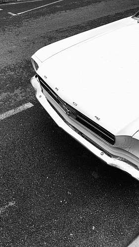 photo bumper white car transportation free for commercial use images